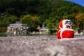 京都新聞写真コンテスト 『あっち向いてホイ!』