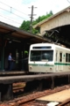 京都新聞写真コンテスト『暑さ対策・・気休めではありません』
