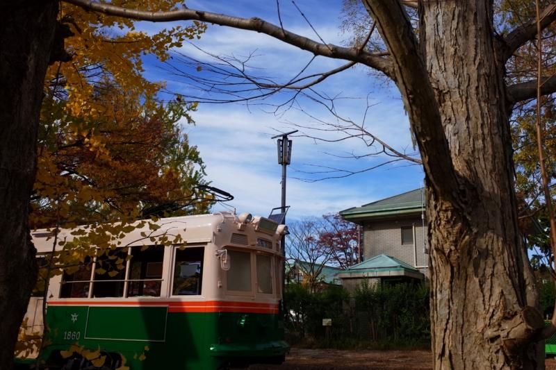 京都新聞写真コンテスト『つぎは~秋町。お忘れ物ございませんように