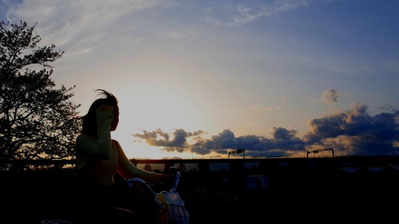京都新聞写真コンテスト 『PM6時、心が和らぐ帰り道。』