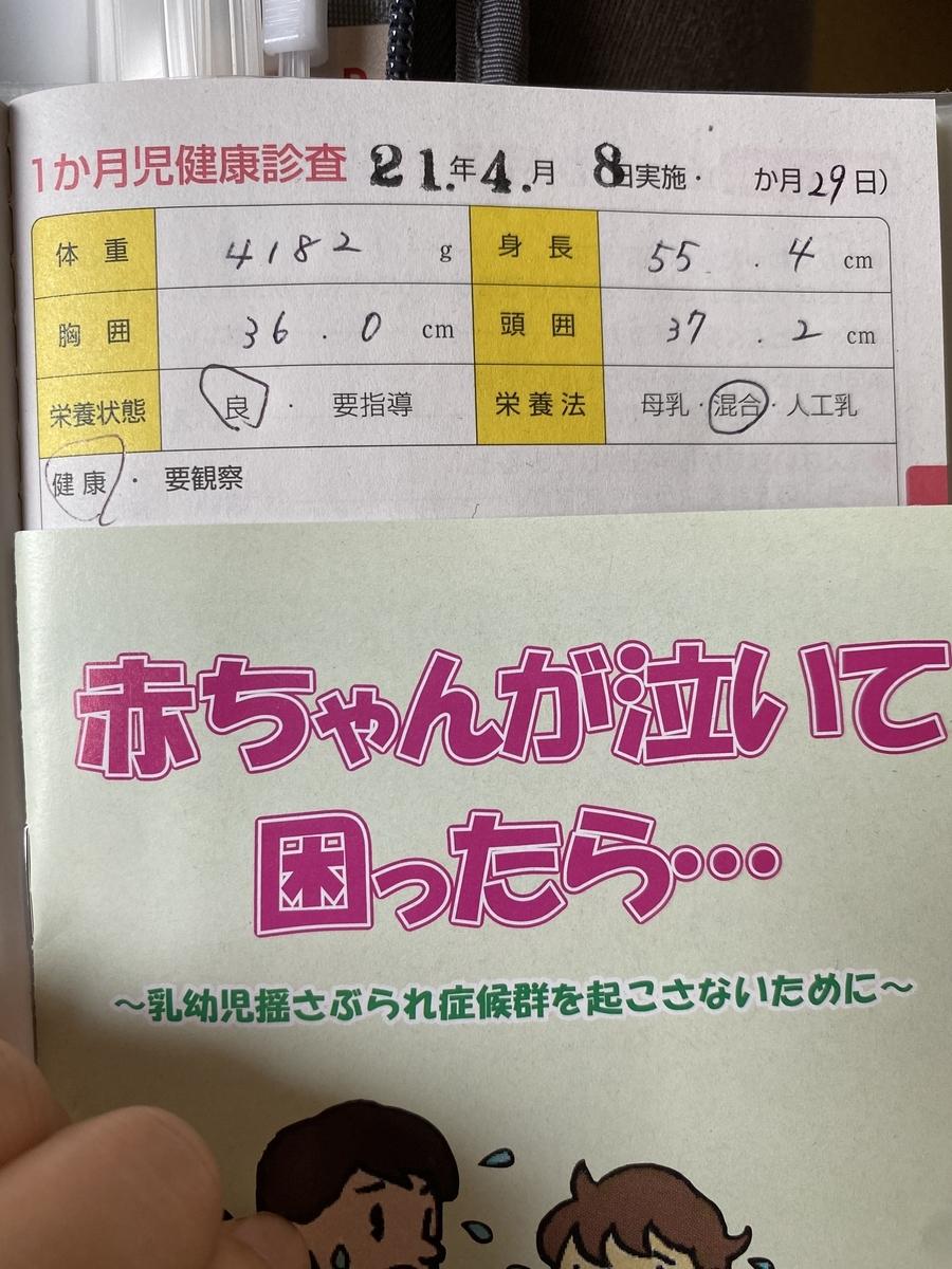 f:id:koishimarulog:20210412005925j:plain