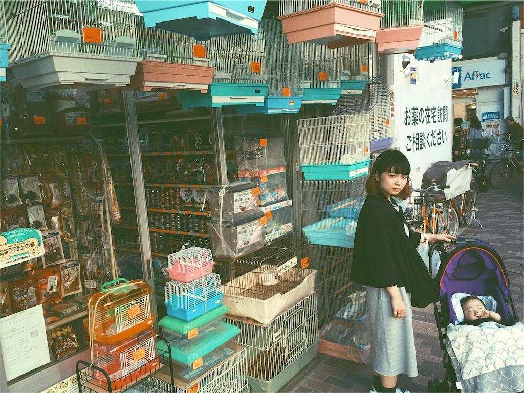 f:id:koisuruwakusei:20161101001838j:image