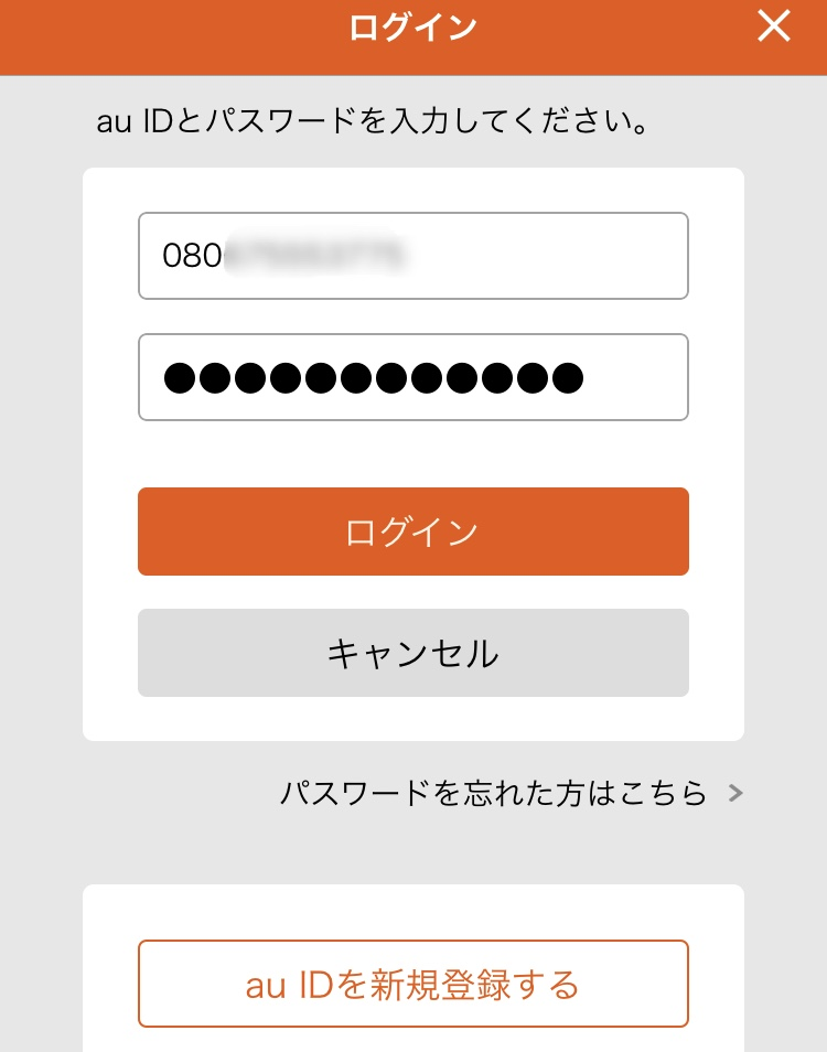 f:id:koiwai_chinatsu:20200101053607j:plain