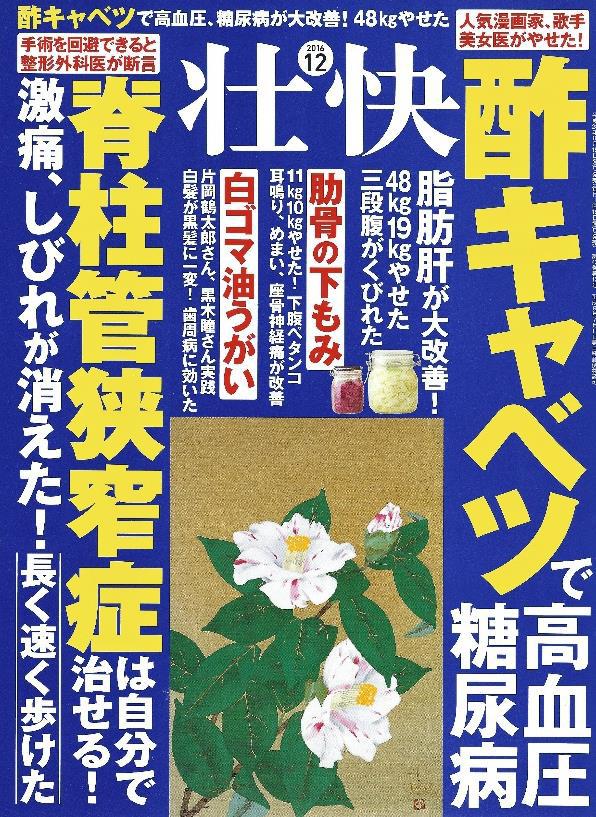 f:id:koizumitougouiryou:20161026185850p:plain