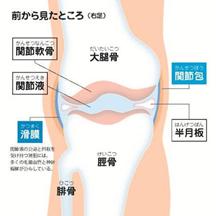 f:id:koizumitougouiryou:20170904121135p:plain