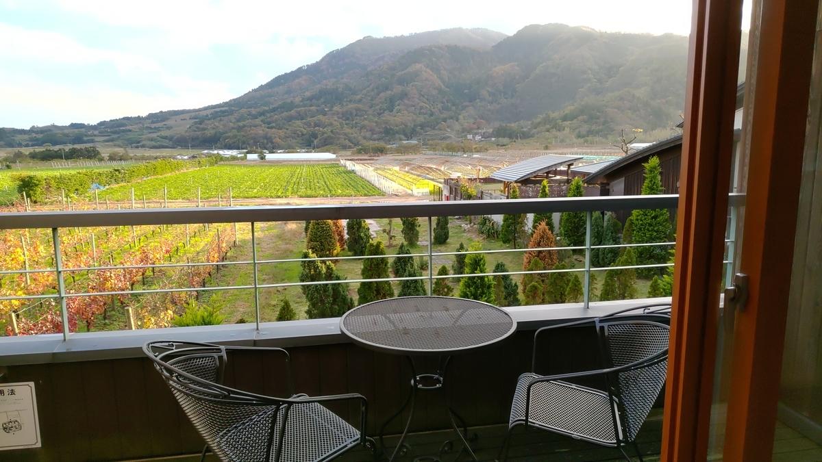 テラスからの眺望。ぶどう畑と角田山。