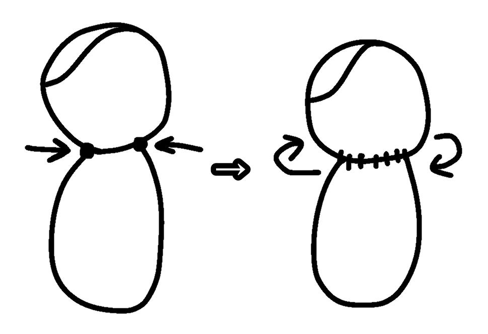 f:id:kojikoji4253:20210117164217p:image