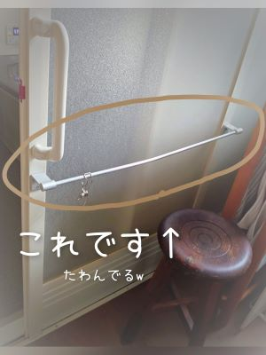 f:id:kokahibi:20210213213739j:plain