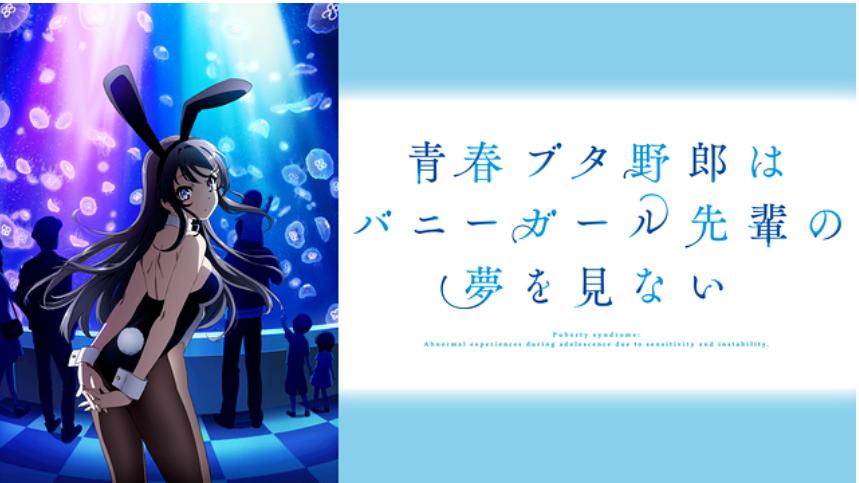 f:id:kokawakko:20210125130728p:plain