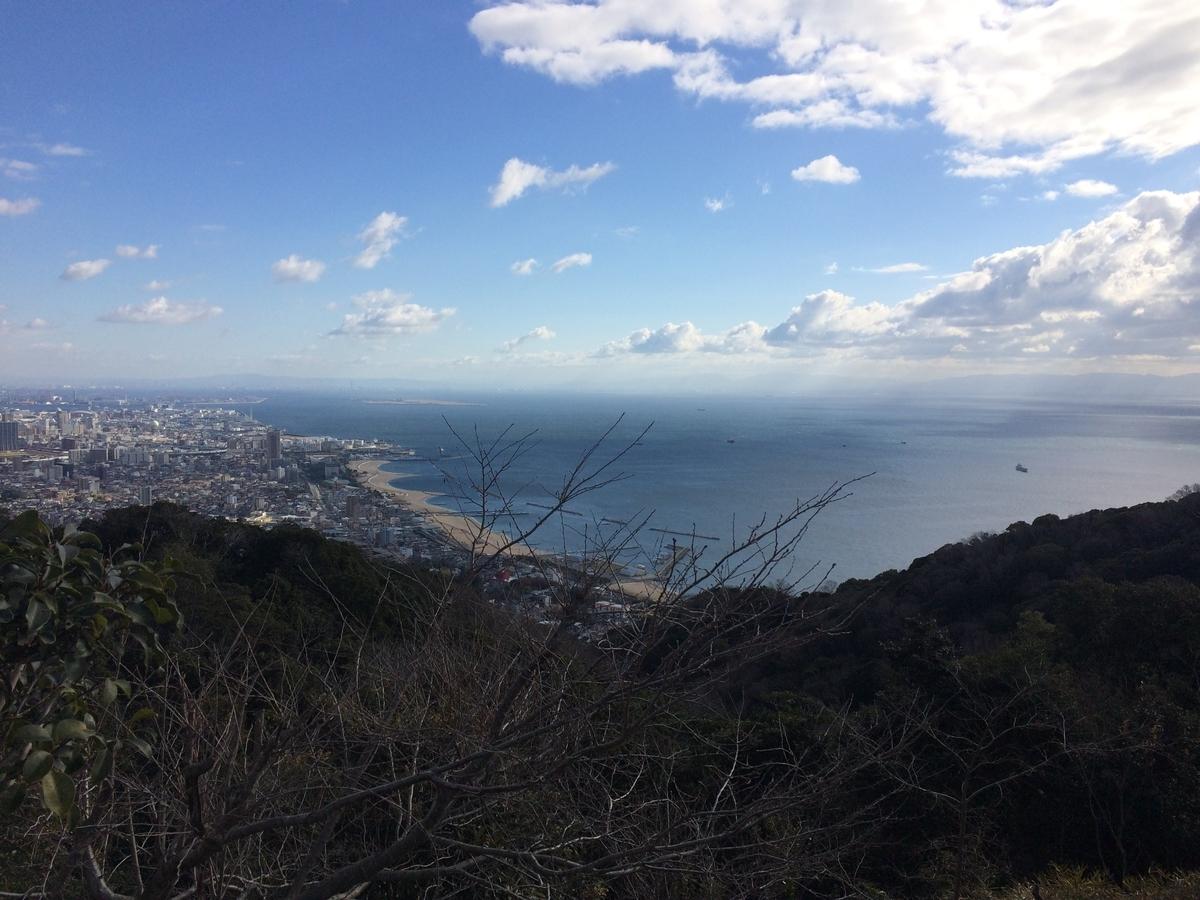 f:id:kokeshiwabuki:20210101104052j:plain