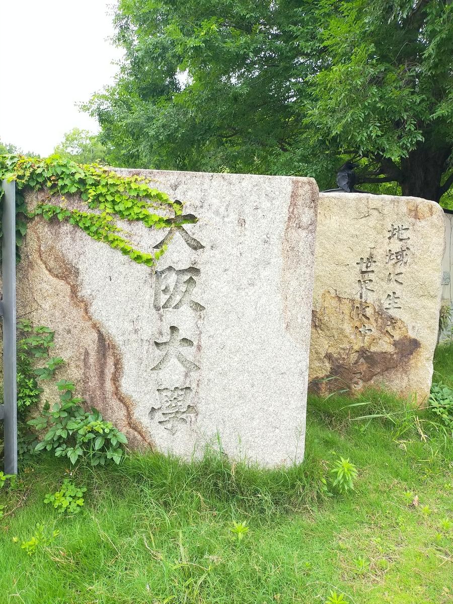 f:id:kokeshiwabuki:20210618144428j:plain
