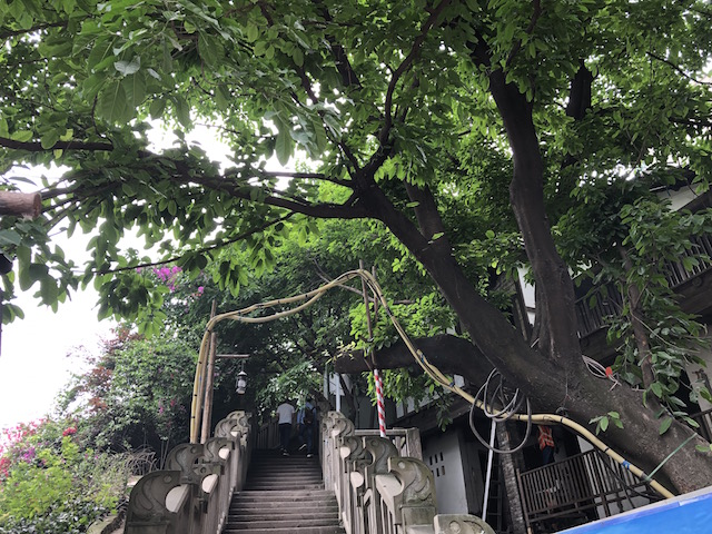 f:id:kokeshiyamada:20190610154804j:plain