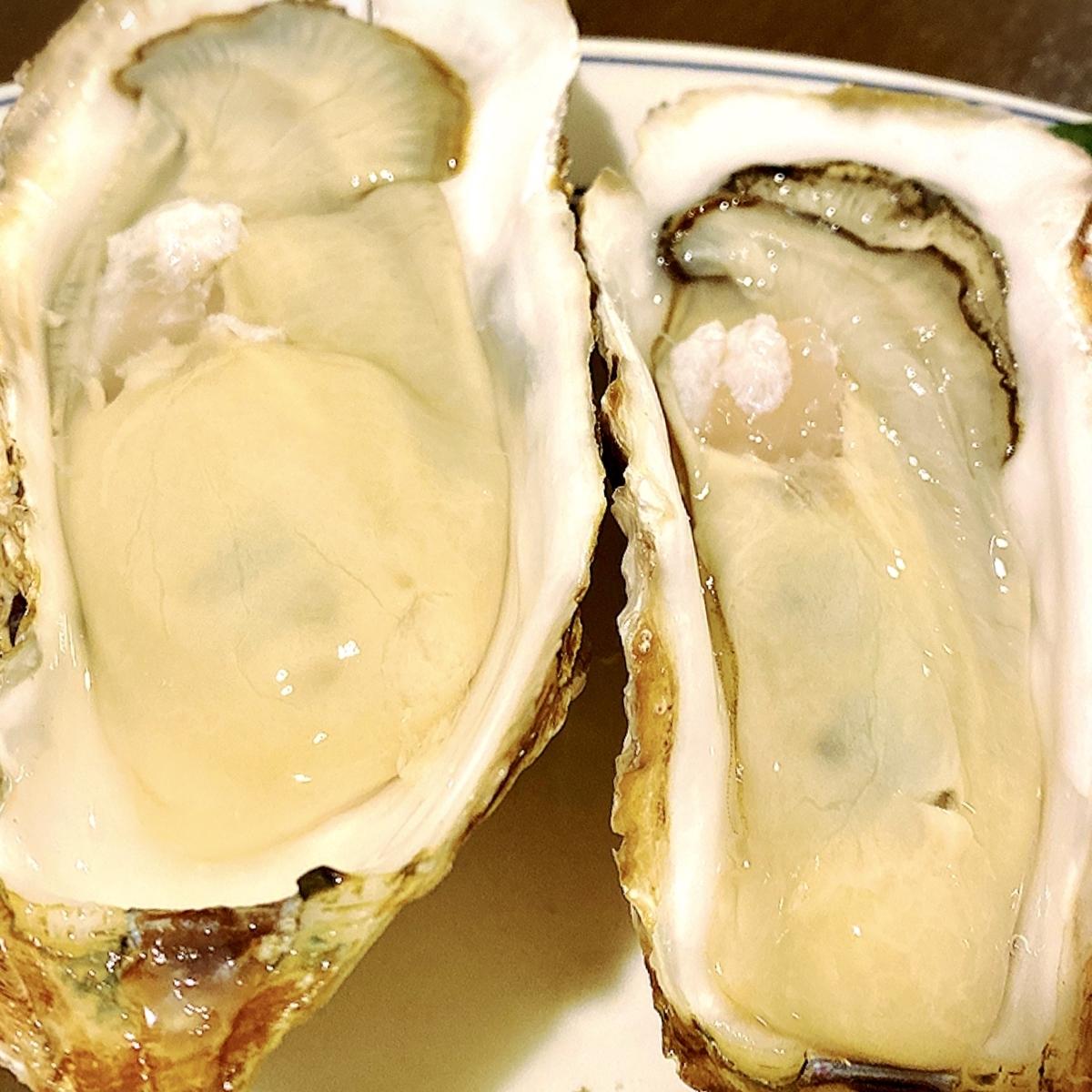 東京駅近でコスパ良く牡蠣や海鮮を堪能できる居酒屋!牡蠣は1個299円から!?