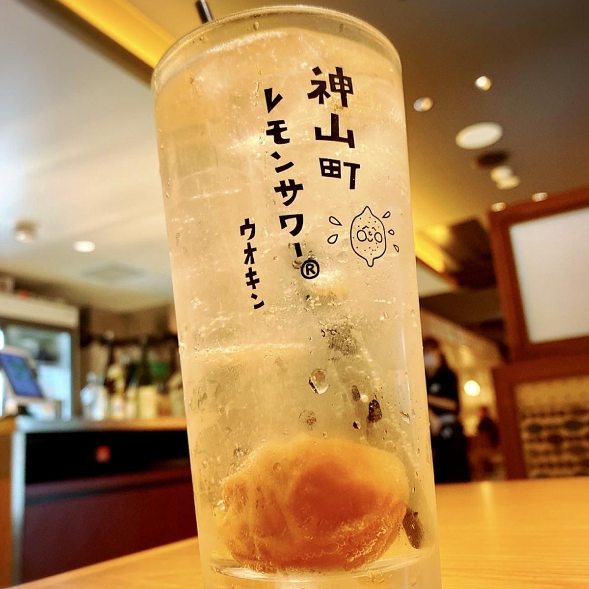 「マグロ食堂魚金」は一人飲みから小宴会などにおすすめの居酒屋でした