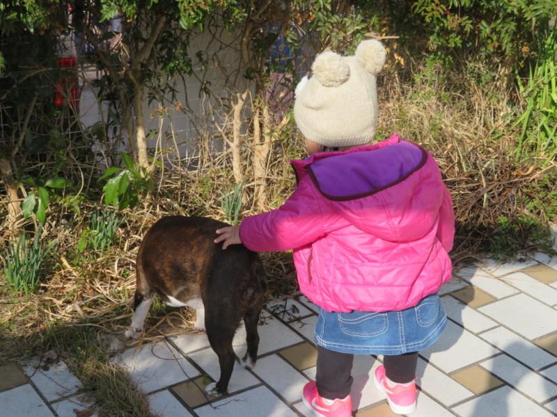 f:id:kokichikawabe:20180220092240j:image