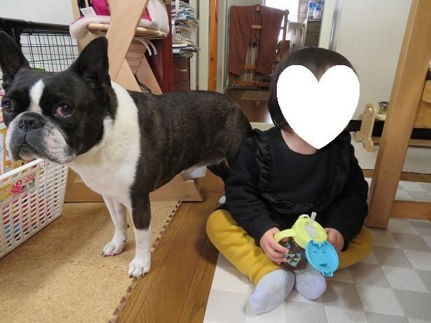 f:id:kokichikawabe:20180221133444j:image