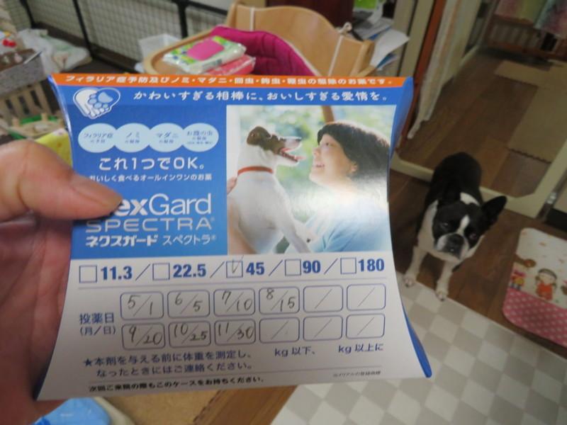 f:id:kokichikawabe:20180607065741j:image