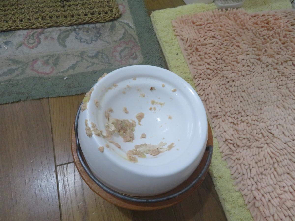 f:id:kokichikawabe:20210511175048j:plain