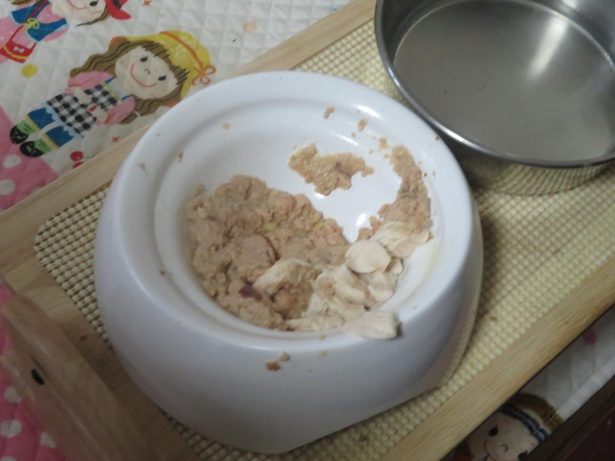 f:id:kokichikawabe:20210512162004j:plain