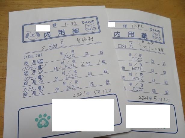 f:id:kokichikawabe:20210513060849j:plain