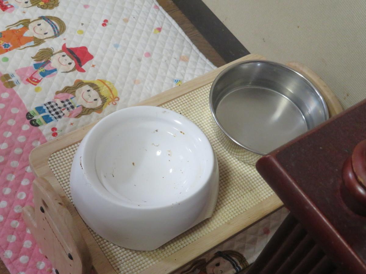 f:id:kokichikawabe:20210615113520j:plain