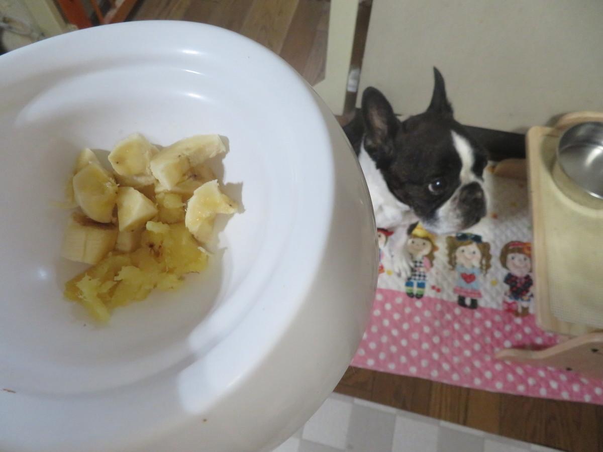 f:id:kokichikawabe:20210617201115j:plain