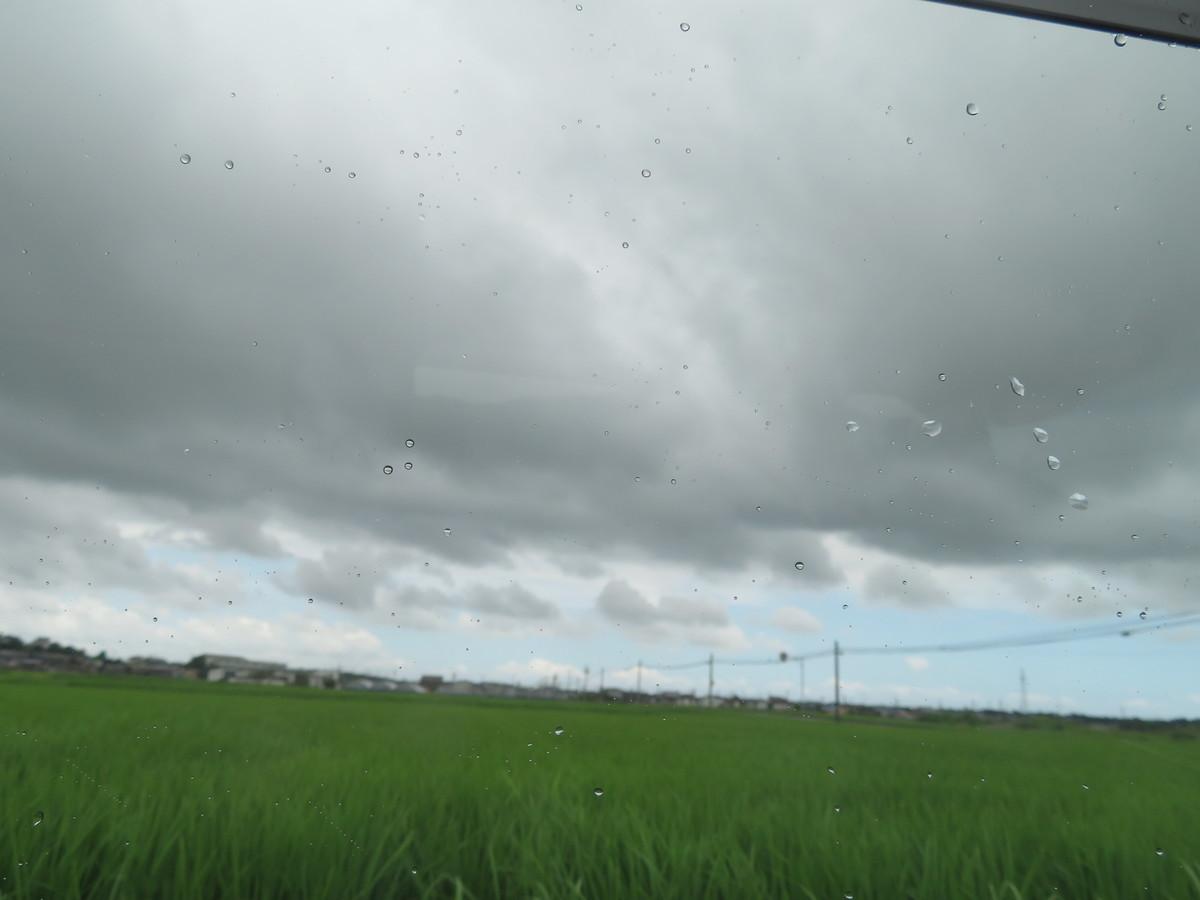 f:id:kokichikawabe:20210717115531j:plain