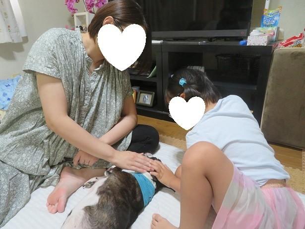 f:id:kokichikawabe:20210723131040j:plain