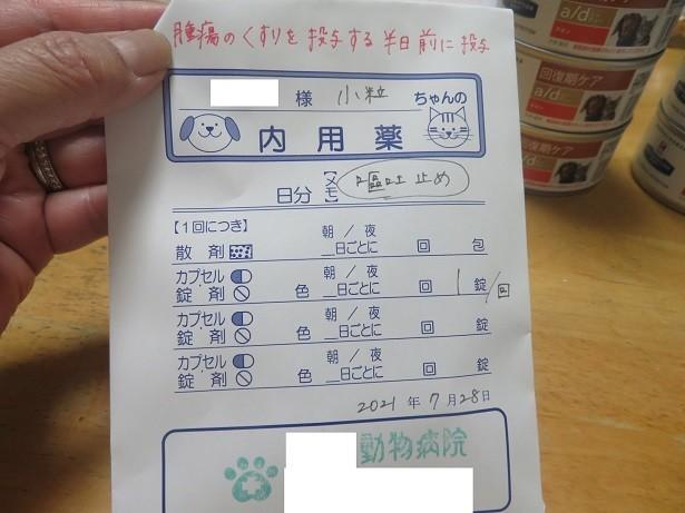 f:id:kokichikawabe:20210728202918j:plain