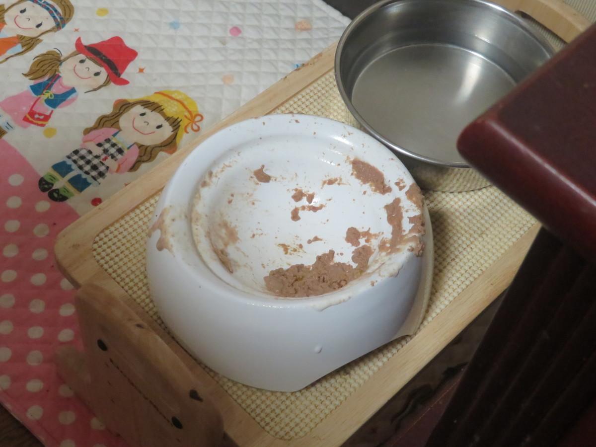 f:id:kokichikawabe:20210731154813j:plain