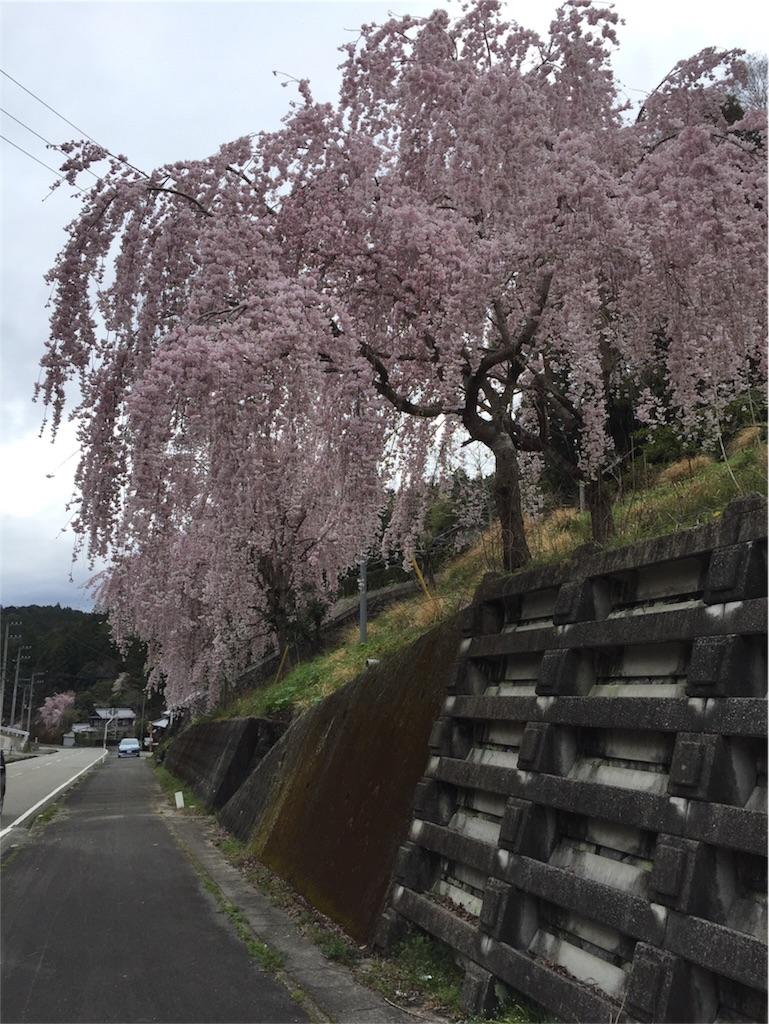 f:id:kokohahurusatokazemakase:20170407205831j:image