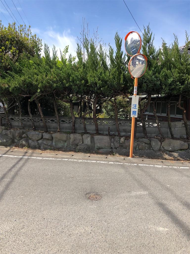 f:id:kokohahurusatokazemakase:20190414173018j:image