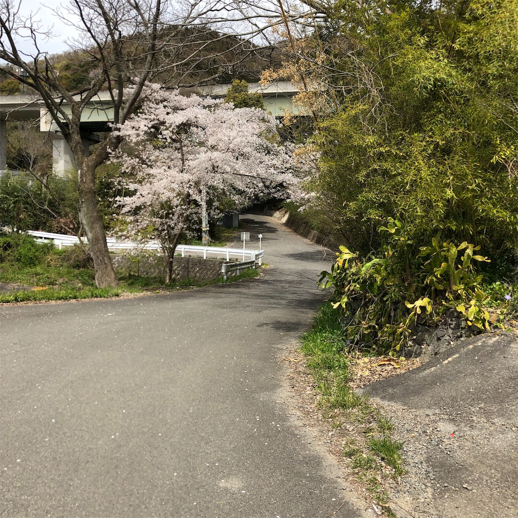 f:id:kokohahurusatokazemakase:20190415162312j:image