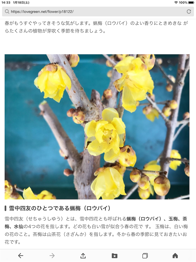 f:id:kokohahurusatokazemakase:20200118150917p:image