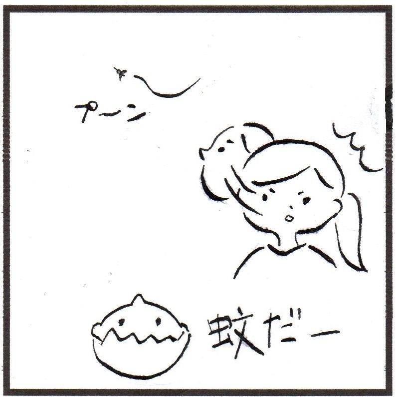 f:id:kokokaku:20170607135540j:plain
