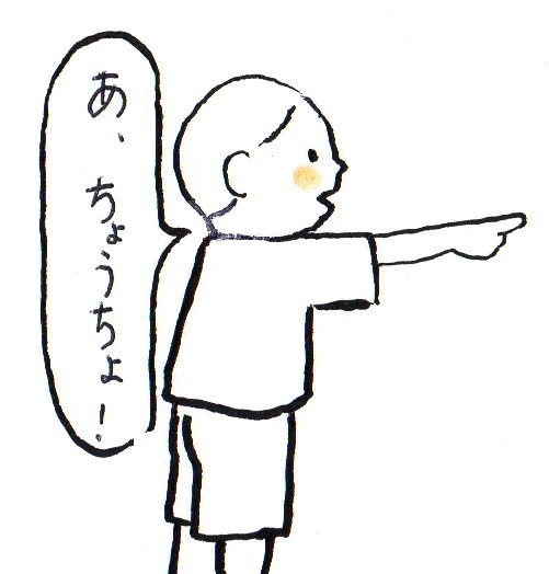 f:id:kokokaku:20171104145456j:plain