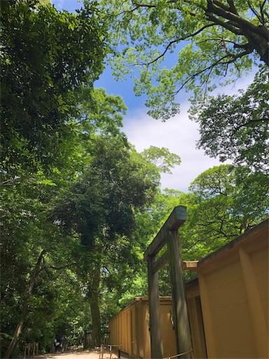 f:id:kokokarawarau:20190522234354j:image
