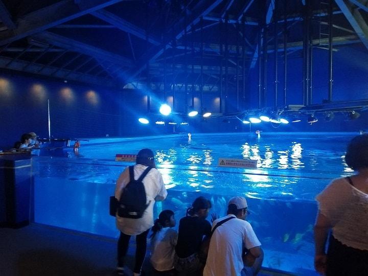 のとじま水族館 ジンベイザメ館