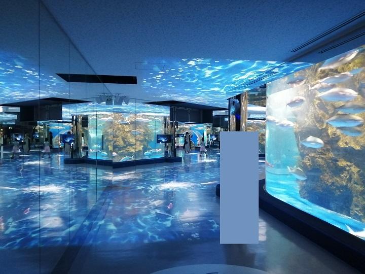 のとじま水族館 のと海遊回廊