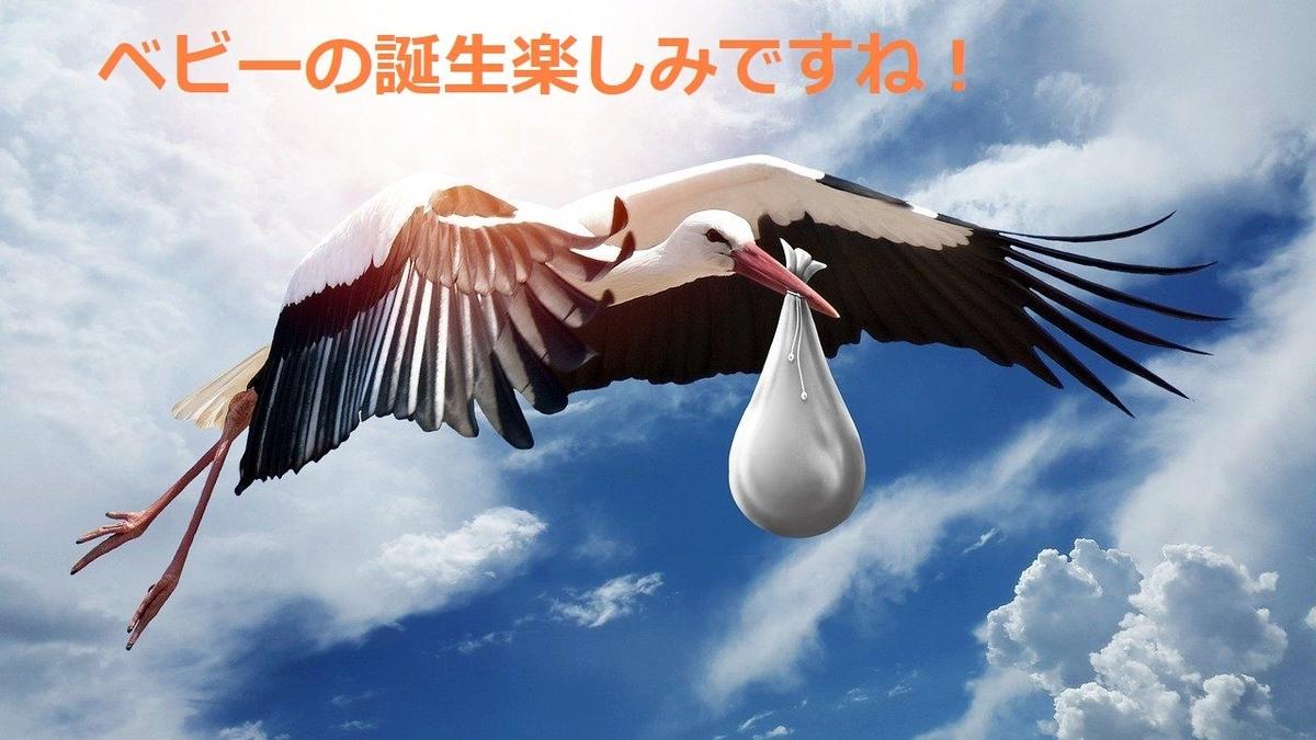 f:id:kokoro-aozora:20200521205357j:plain