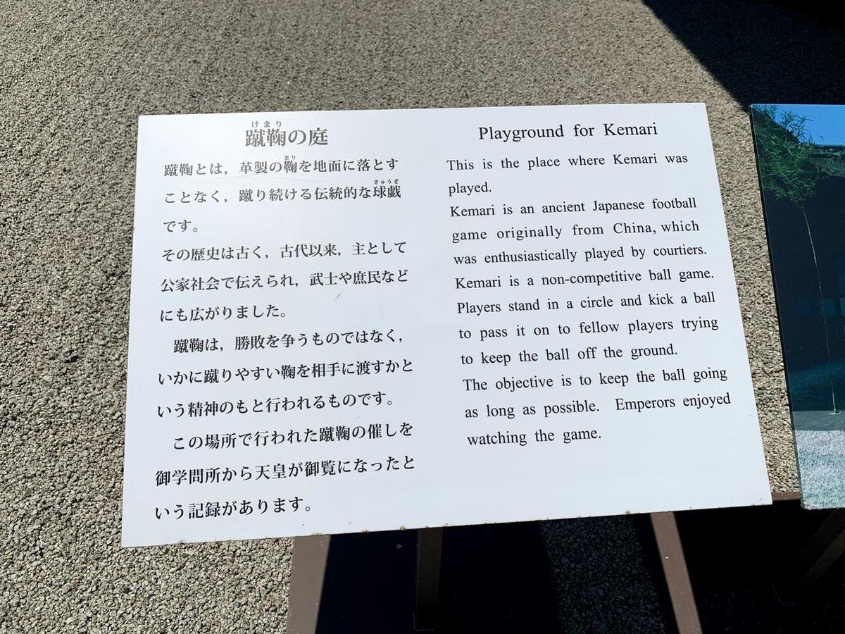 f:id:kokoro-aozora:20200715221916j:plain