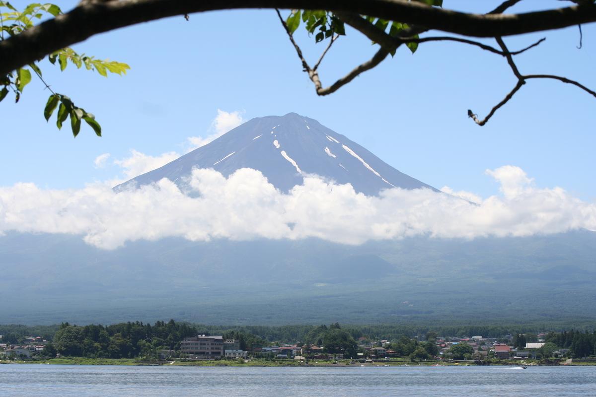 f:id:kokoro-no-kaihou:20210121115043j:plain