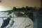 2012/6/2/コザクラインコ/蚕杢青草を食む