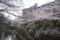 2012.4.6板橋区石神井川いこいの水辺