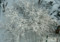 2018.1.18/帯広の雪