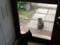 2018.6.18/玄関フードの前に猫が座ってる。
