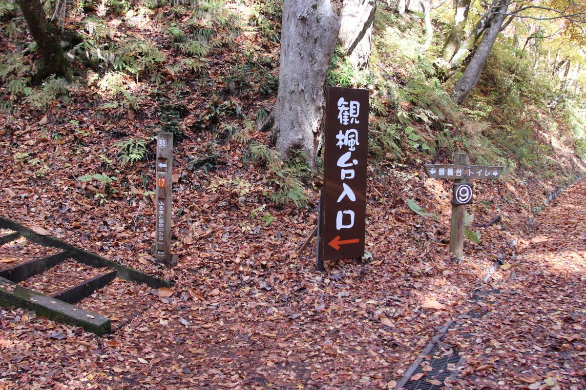 f:id:kokoro_no_sumika:20200204180624j:plain