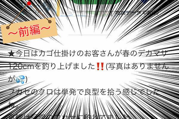 f:id:kokorono_oto529:20200403154543j:plain