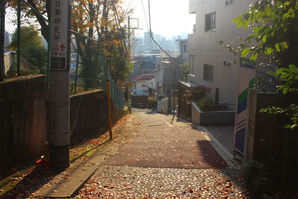f:id:kokorozashimizu:20161215173116j:plain