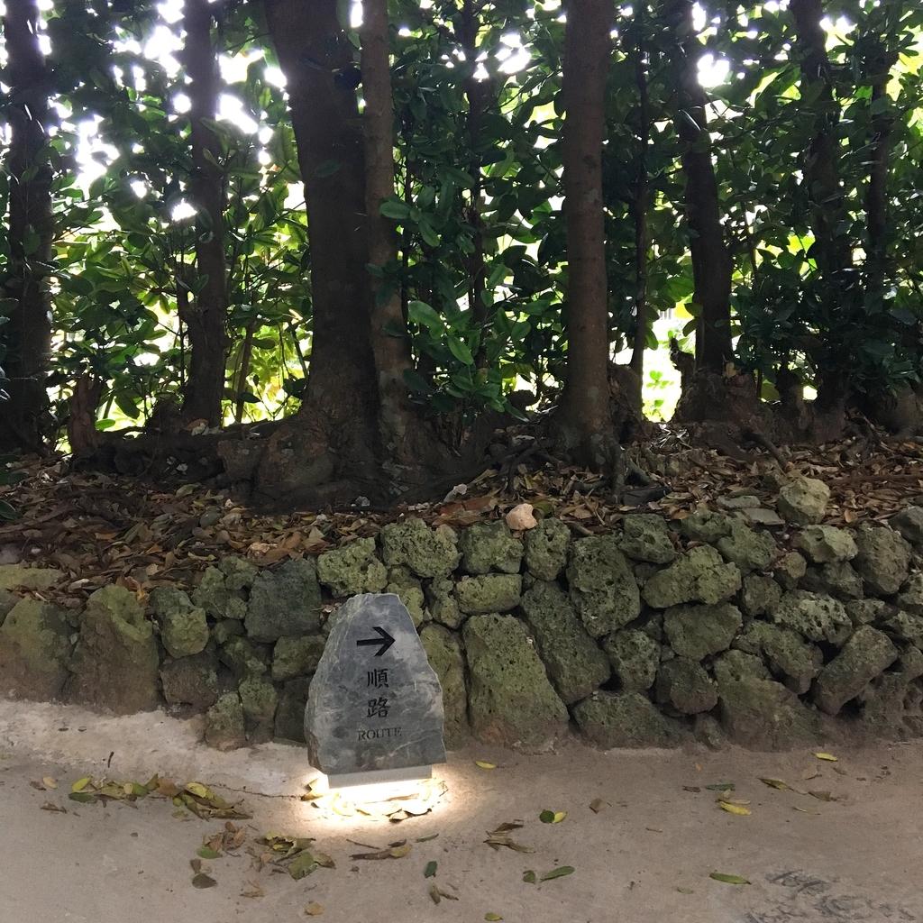 f:id:kokoskokos:20190205222135j:plain